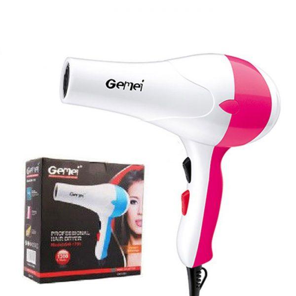 Hair Dryers GM-1701